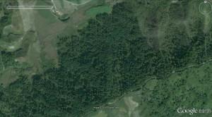 Yodok-logging-2003-10-1
