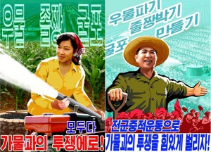KCNA-2015-6-3-Drought-posters